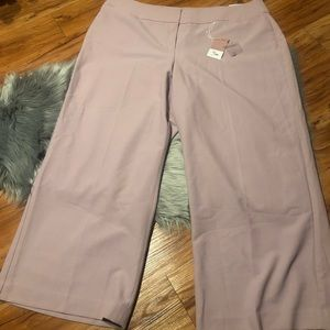 Lane Bryant Tailored Stretch Pants NWT 26